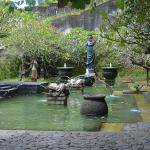 Tortoise Plaza