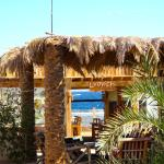 View from the rooms to the dive centre and oceanfront cafe