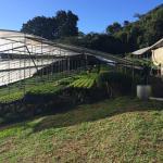 Photo de Los Pinos - Cabanas y Jardines