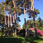 Foto de Muckross House and Gardens
