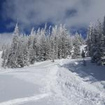 2 feet of fresh powder during our stay