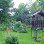 Side yard and vegetable garden
