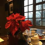 The breakfast table setting