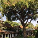 Tamarind Village Foto