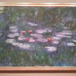 """Claude Monet's """"Waterlilies"""""""