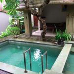 Pool from Villa 2