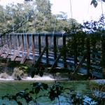 Photo de Lake Te Anau