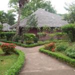 Ravintsara Wellness Hotel Foto