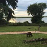 Chobe Marina Lodge Foto