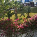 Photo de Sultan Gardens Resort