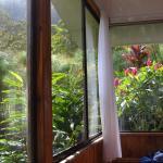 Foto de Hotel Quelitales