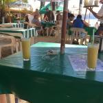 Foto de Burro's Bar