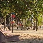 Foto de Lime Tree Bay Resort