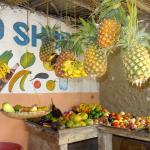 Фотография Mamamapambo Boutique Hotel