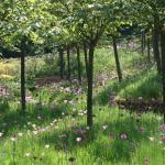 Photo de The Alnwick Garden