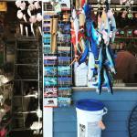 Oceanside Pier Foto