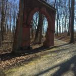 Hayes Arboretum Foto