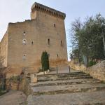 Pope John XXII's Castle