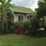 Susan and Rod have beautiful gardens around the cottages!