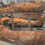 Mummies.