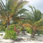 Fun Island Resort Foto