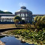 Pearson Conservatory