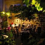 Weingarten am Abend
