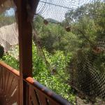 Une des vues de la terrasse