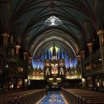 Foto di Basilica di Notre-Dame (Basilique Notre-Dame)