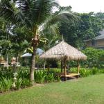 Photo de King's Garden Resort