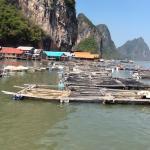 Foto de June Bahtra Phang Nga Bay Day Trip