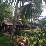 Photo de Soma Palmshore Beach Resort