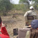 Elephant Plains Game Lodge Foto