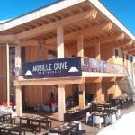 Hotel L'Aiguille Grive