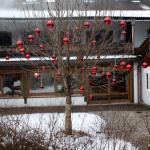 Lichtmannegger's im Berghotel Rehlegg Foto