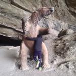 Photo de Cueva del Milodon