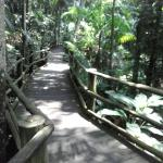 Jardim Botânico de São Paulo Foto