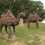 Statues in remembrance of Doris Duke's pet camels, on front lawn