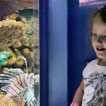 Interactive Aquarium Foto
