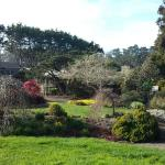 Photo de Mendocino Coast Botanical Gardens
