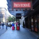 The Belvedere Foto