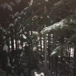Foto de Coast Blackcomb Suites at Whistler