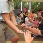 Photo de Taronga Zoo