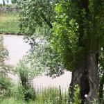 Parque La Lombardía