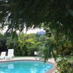 Blick zum Pool  u. In den Garten