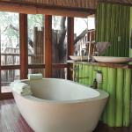 Jaci's Tree Lodge Foto