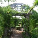 Park Rosenhöhe Foto
