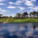 Naples Grande Golf Club Foto