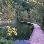 Photo de Plitvice Lakes