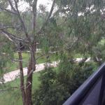 Meriton Serviced Apartments Parramatta Foto